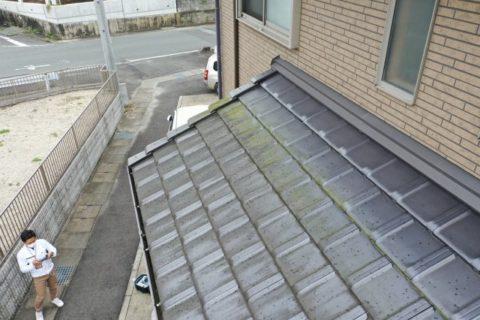 屋根の苔の発生の様子